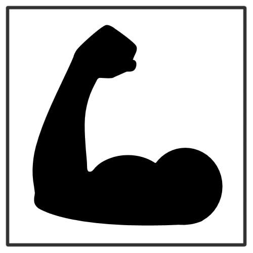 عصب و عضله